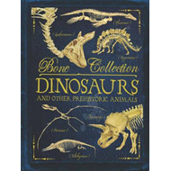 Bone Collections: Dinosaurs (BOK)