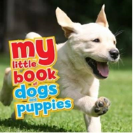 My Little Book of Dogs and Puppies (BOK)