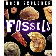 Rock Explorer: Fossils (BOK)