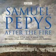 Samuel Pepys - After the Fire (BOK)