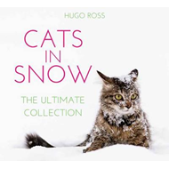 Cats in Snow (BOK)