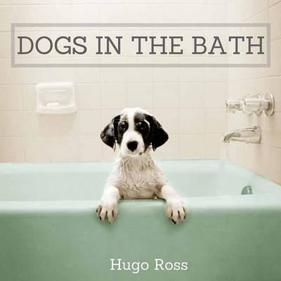 Dogs in the Bath (BOK)