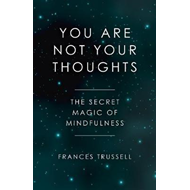 You Are Not Your Thoughts (BOK)