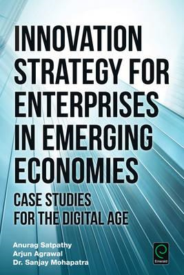 Innovation Strategy for Enterprises in Emerging Economies (BOK)