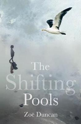 Shifting Pools (BOK)