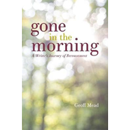 Gone in the Morning (BOK)