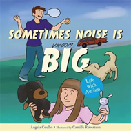 Sometimes Noise is Big (BOK)