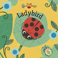 Tales From Nature: Ladybird (BOK)