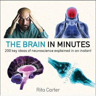 The Brain in Minutes (BOK)