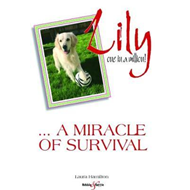 Lily: one in a million (BOK)