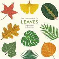 Little Guide to Leaves (BOK)