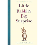 Little Rabbit's Big Surprise (BOK)