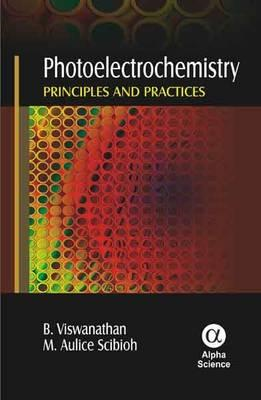 Photoelectrochemistry: Principles and Practices (BOK)