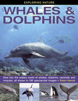 Exploring Nature: Whales & Dolphins (BOK)