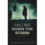 Calling Down The Storm (BOK)