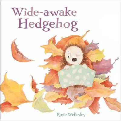 Wide-Awake Hedgehog (BOK)