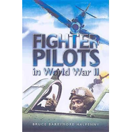 Fighter Pilots in World War II: True Stories of Frontline Air Combat (BOK)