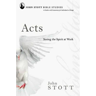 Acts: Seeing the Spirit at Work (BOK)