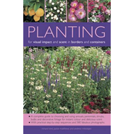 Planting for Visual Impact and Scent in Borders and Containe (BOK)