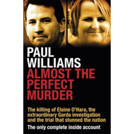 Almost the Perfect Murder (BOK)