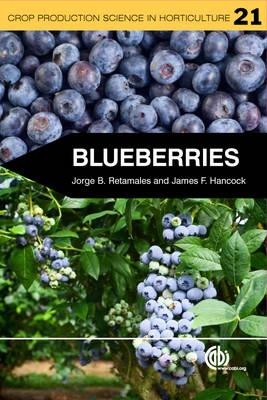 Blueberries (BOK)