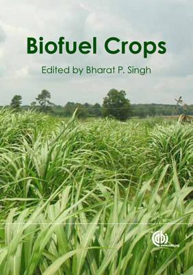 Biofuel Crops: Production, Physiology and Genetics (BOK)