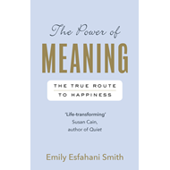 Power of Meaning (BOK)