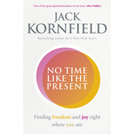 No Time Like the Present (BOK)
