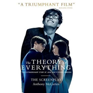 Theory of Everything: The Screenplay (BOK)