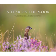 Year on the Moor (BOK)