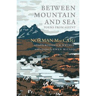 Produktbilde for Between Mountain and Sea (BOK)