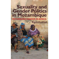 Sexuality and Gender Politics in Mozambique (BOK)