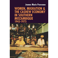 Women, Migration & the Cashew Economy in Southern Mozambique (BOK)