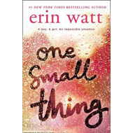 One Small Thing (BOK)