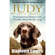 Judy: A Dog in a Million (BOK)