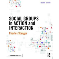 Social Groups in Action and Interaction (BOK)