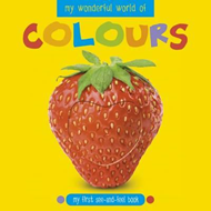 My Wonderful World of Colours (BOK)