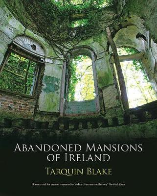 Abandoned Mansions of Ireland (BOK)
