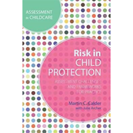 Risk in Child Protection (BOK)