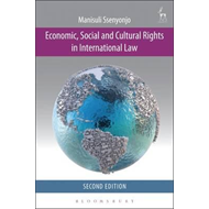Economic, Social and Cultural Rights in International Law (BOK)