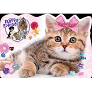 Cute Kitten: A Fluffy Friends Story Book (BOK)