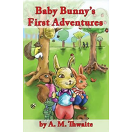 Baby Bunny's First Adventures (BOK)