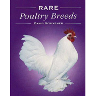 Rare Poultry Breeds (BOK)