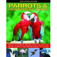 Exploring Nature: Parrots & Rainforest Birds (BOK)