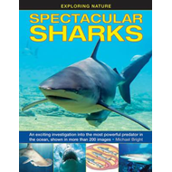 Exploring Nature: Spectacular Sharks (BOK)
