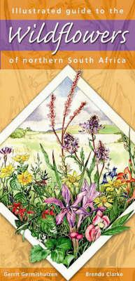 Illustrated Guide to Wildflowers of Northern South Africa (BOK)