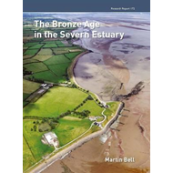 Bronze Age in the Severn Estuary (BOK)