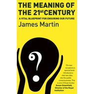 Meaning Of The 21st Century (BOK)