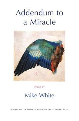 Addendum to a Miracle (BOK)