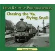 Chasing the Flying Snail (BOK)